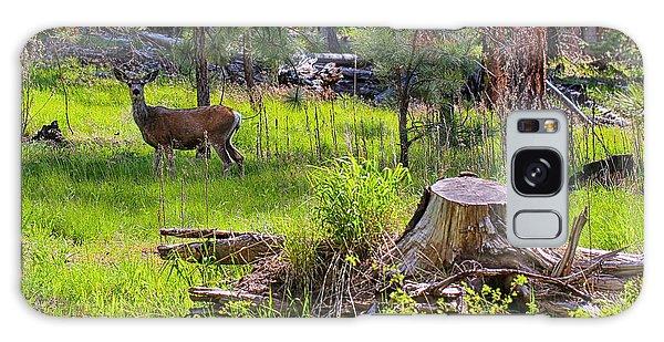 Mule Deer In Oregon Galaxy Case