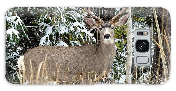 Mule Deer In The Snow Galaxy Case