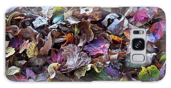 Multicolored Autumn Leaves Galaxy Case