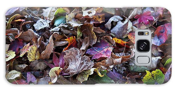 Multicolored Autumn Leaves Galaxy Case