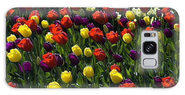 Multicolored Tulips At Tulip Festival. Galaxy Case by Yulia Kazansky