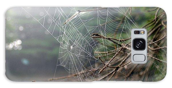 Multiple Webs - Near Galaxy Case