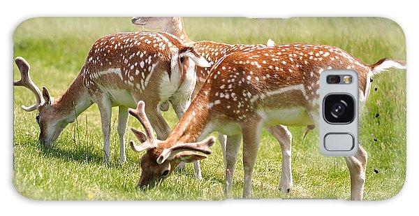 Multitasking Deer In Richmond Park Galaxy Case by Rona Black