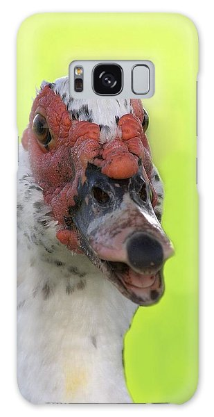 Muscovy Duck Galaxy Case