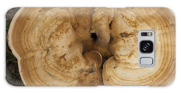 Mushroom Sculpture Galaxy Case