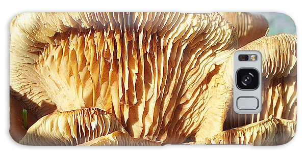 Mushrooms By Jan Marvin Galaxy Case