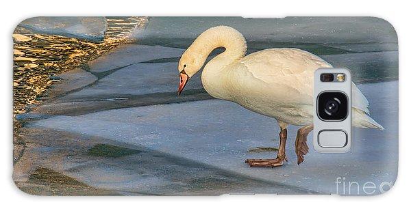 Mute Swan On Ice  Galaxy Case by Gerda Grice