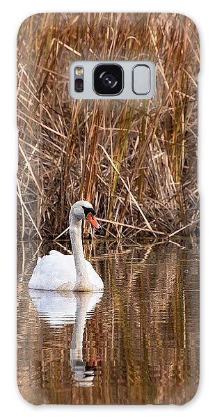 Mute Swan Reflection Galaxy Case