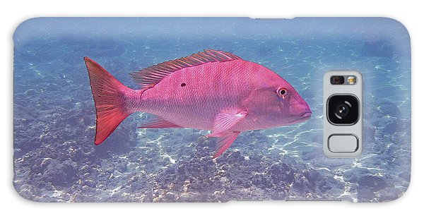 Mangrove Snapper Galaxy Case - Mutton Snapper Profile by Carey Chen