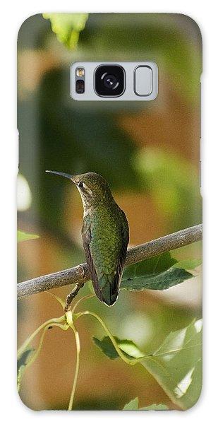 My Green Colored Hummingbird 4 Galaxy Case