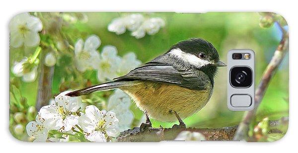 Chickadee Galaxy S8 Case - My Little Chickadee In The Cherry Tree by Jennie Marie Schell