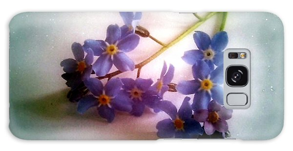 Myosotis  Forget Me Not Galaxy Case