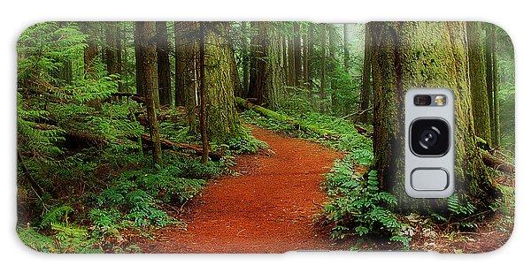 Mystical Trail Galaxy Case