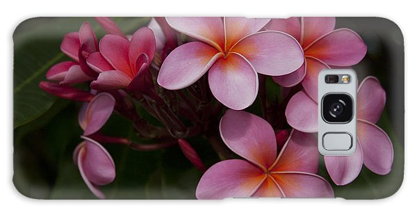 Na Lei Pua Melia O Wailua - Pink Tropical Plumeria Hawaii Galaxy Case