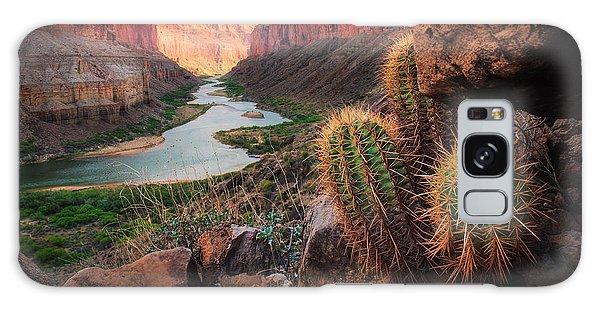 Cacti Galaxy Case - Nankoweap Cactus by Inge Johnsson