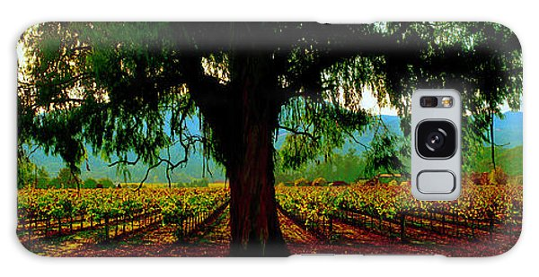 Napa Valley Ingenook Winery Roadside Galaxy Case