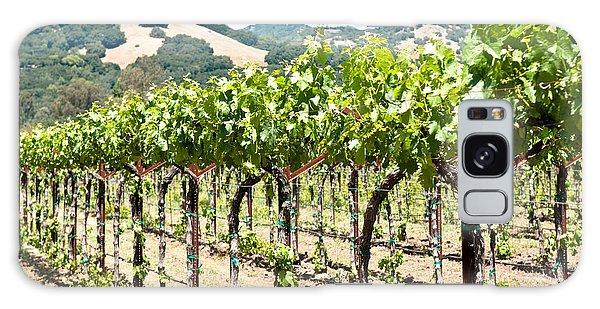 Napa Vineyard Grapes Galaxy Case by Shane Kelly