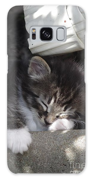 Naptime Kitty Galaxy Case by Tannis  Baldwin