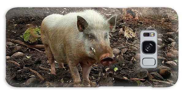 Traits Galaxy Case - Narave Pig by Thierry Berrod, Mona Lisa Production/ Science Photo Library