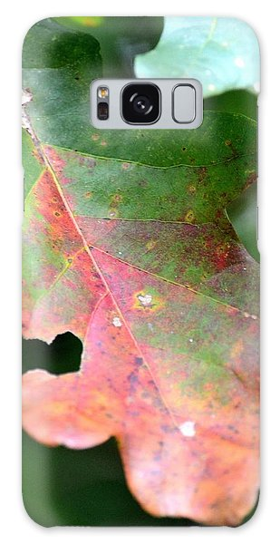 Natural Oak Leaf Abstract Galaxy Case