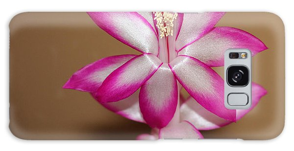 Natural Pink Christmas Cactus Galaxy Case