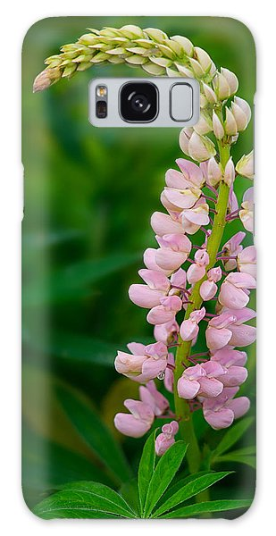 Nature Takes A Bow Galaxy Case