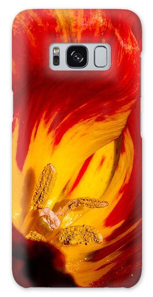 Nature's Flame Galaxy Case