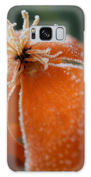 Natures Frost Galaxy Case