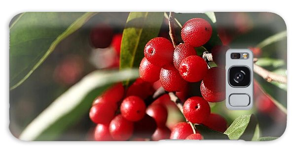 Natures Gift Of Red Berries Galaxy Case