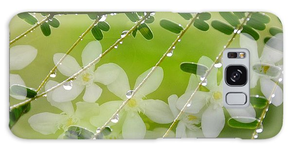 Nature's Jewelry Galaxy Case by Darla Wood