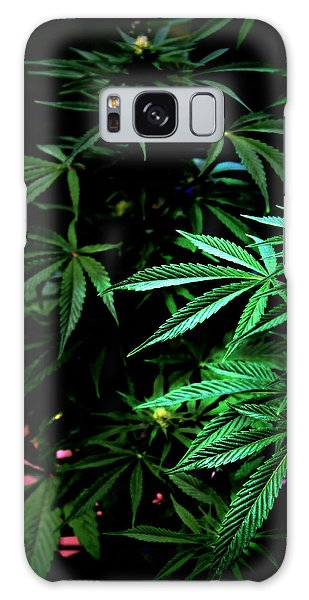 Nature's Medicine Galaxy Case by Jeanette C Landstrom
