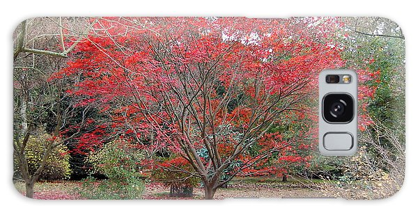 Nature's Red Galaxy Case by Linda Prewer