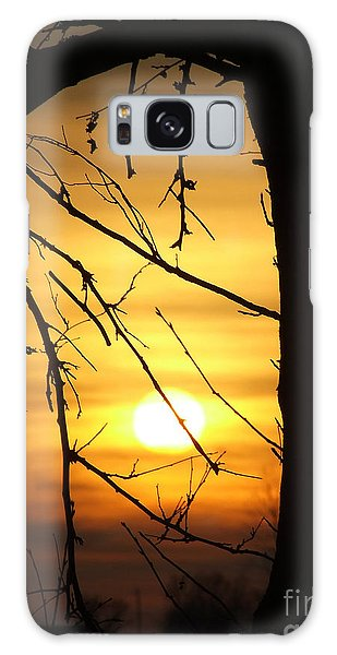Natures Window Galaxy Case