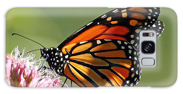Nectaring Monarch Butterfly Galaxy Case