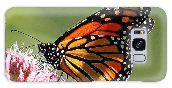 Nectaring Monarch Butterfly Galaxy Case by Debbie Oppermann