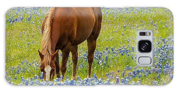 Nelly Grazing Among The Bluebonnets Galaxy Case