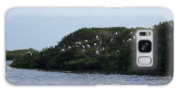 Nesting Storks Galaxy Case