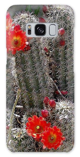 New Mexico Cactus Galaxy Case