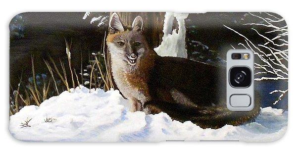 New Mexico Swift Fox Galaxy Case