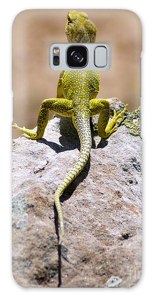 New Photographic Art Print For Sale Lizard Back Ghost Ranch New Mexico Galaxy Case