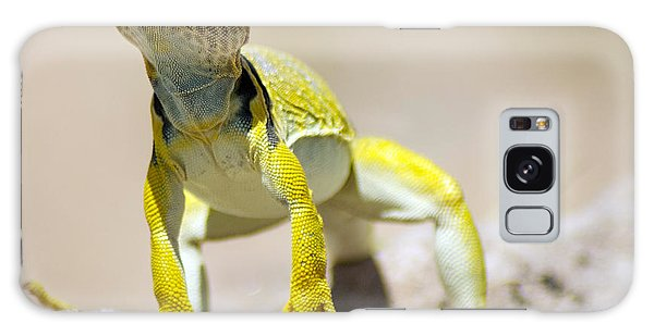 New Photographic Art Print For Sale Yellow Lizard Ghost Ranch New Mexico Galaxy Case