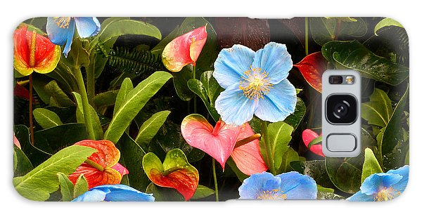 New World And Old World Exotic Flowers Galaxy Case
