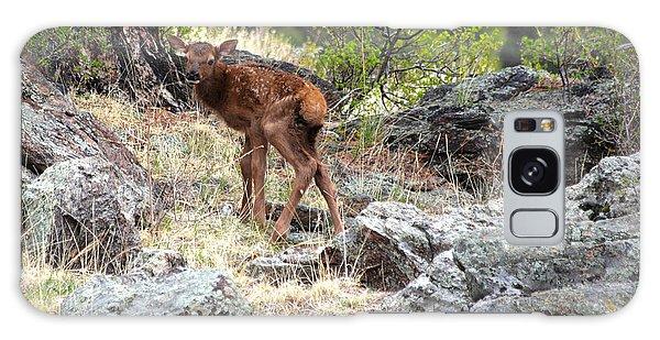 Newborn Elk Calf Galaxy Case