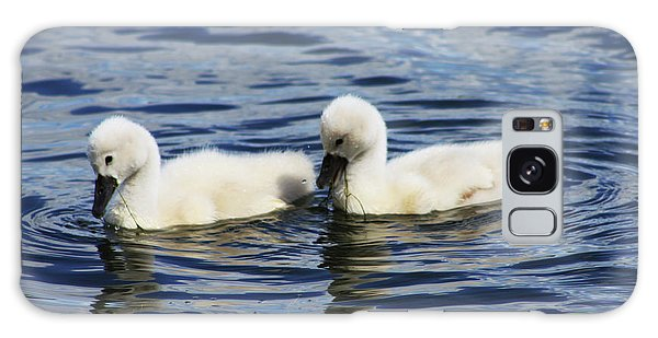 Newborn Mute Swans Galaxy Case