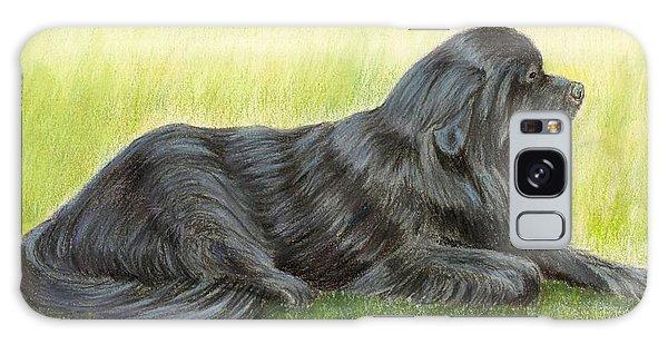 Newfoundland Dog Galaxy Case by Ruth Seal