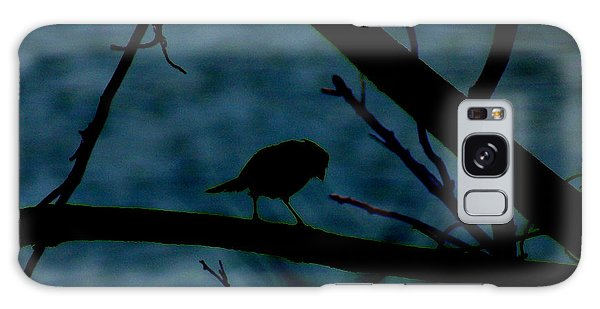 Night Bird Galaxy Case