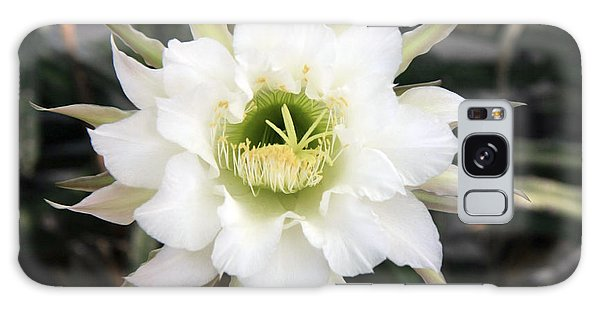 Night Blooming Cereus 2 Galaxy Case