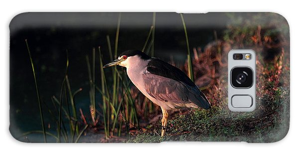 Night Heron  Galaxy Case by Duncan Selby