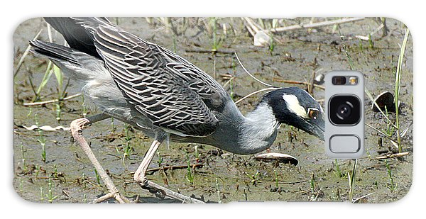 Night Heron Feeding Galaxy Case