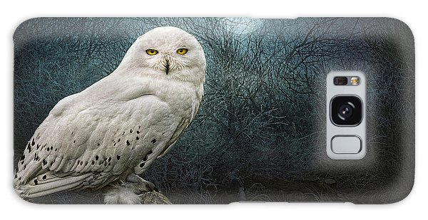 Night Owl Galaxy Case by Brian Tarr